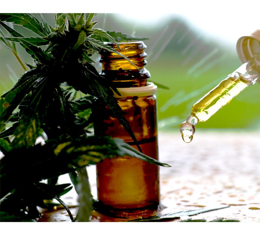 esenciální olej hemp